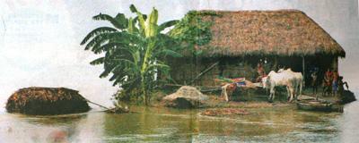 flooding inIndia