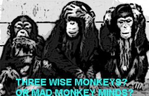 Three wise or mad monkeys